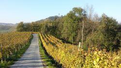 Slovinsko: Vivat termály NOVINKA