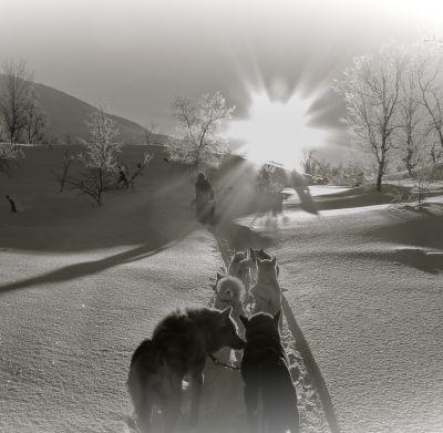 Poetické čekání na zimu aneb Srdcemžiky Simony Wagnerové