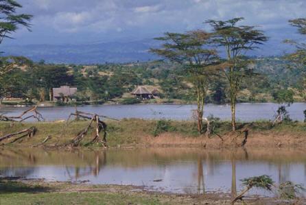 Fotosafari v keňských národních parcích a rezervacích