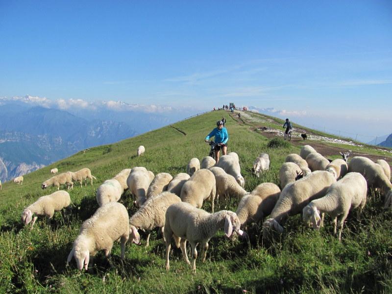 Moře Dolomit - Lago di Garda