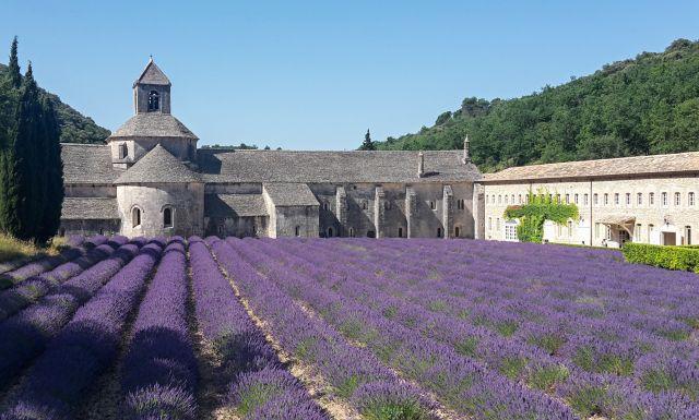 Provence levandulová