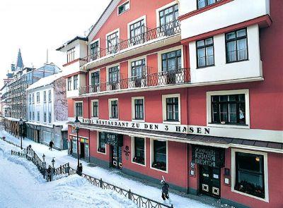 Rodinný hotel Drei Hasen, Mariazell