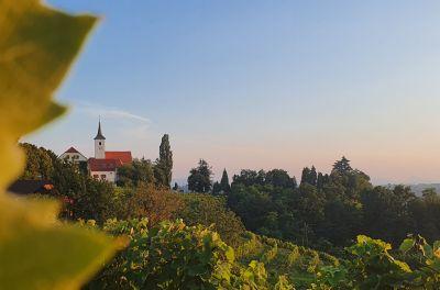 Slovinská cyklonovinka
