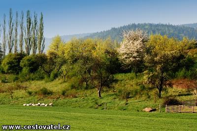 Okolo Neziderského jezera