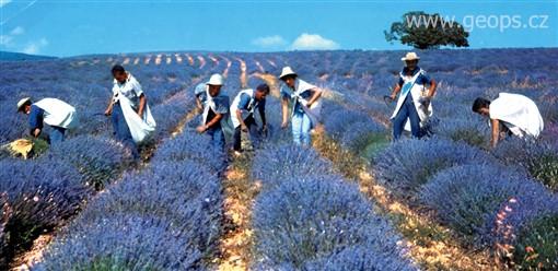 Přírodní parky a památky Provence 2014