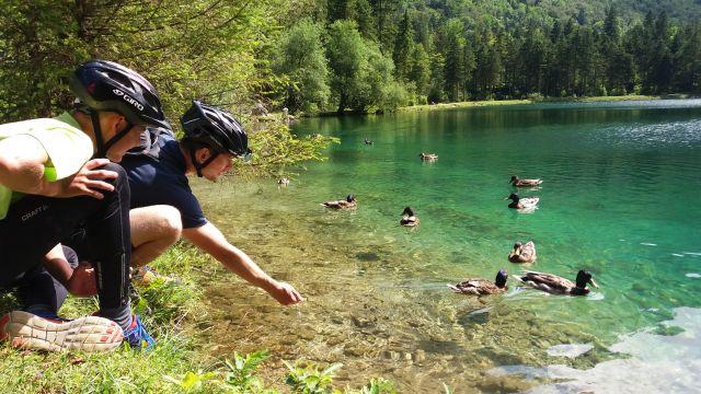 Za vodníky alpských jezer