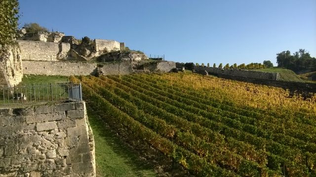 Bordeaux NOVINKA!
