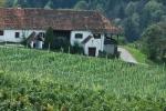 Štýrské stezky a vinohrady