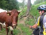 Rakouskem přes hory a doly, cestou necestou...